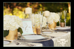 Bucks County Wedding Planner