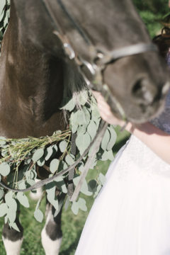 A romantic farm wedding where we used greenery to drape around one of their beautiful horses with the bride