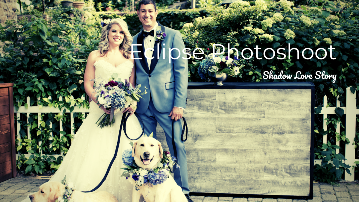 bride and groom with two dogs and flowers