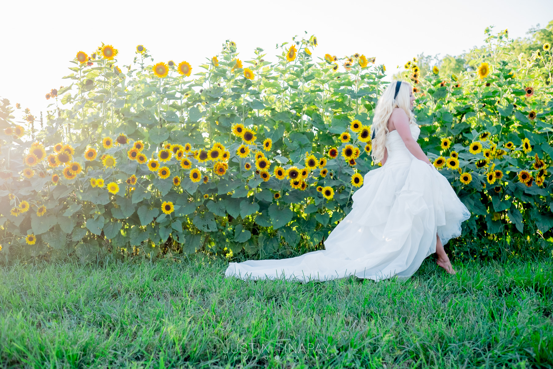 bride walking barefoot by sunflowers