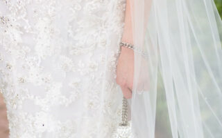 bride dress and veil