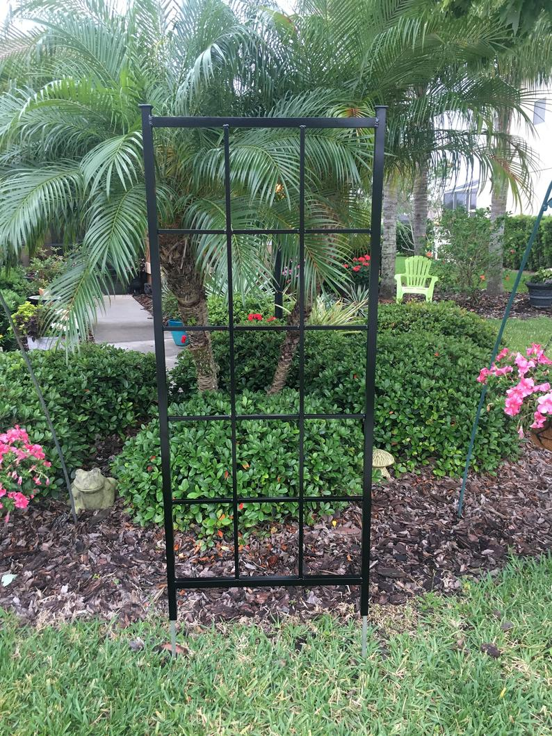 garden trellis for sale